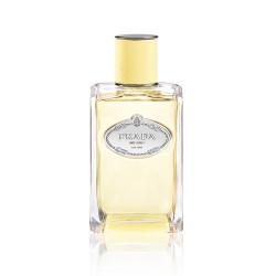 Infusions Mimosa Eau De Parfum 100ml