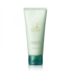 Anti-Dust Fresh Foam Cleanser 90ml