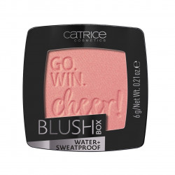 BLUSH BOX COLORETE 020