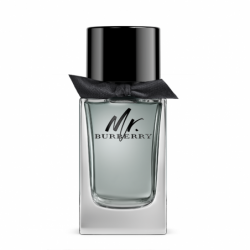 MR BURBERRY EDT V100ml